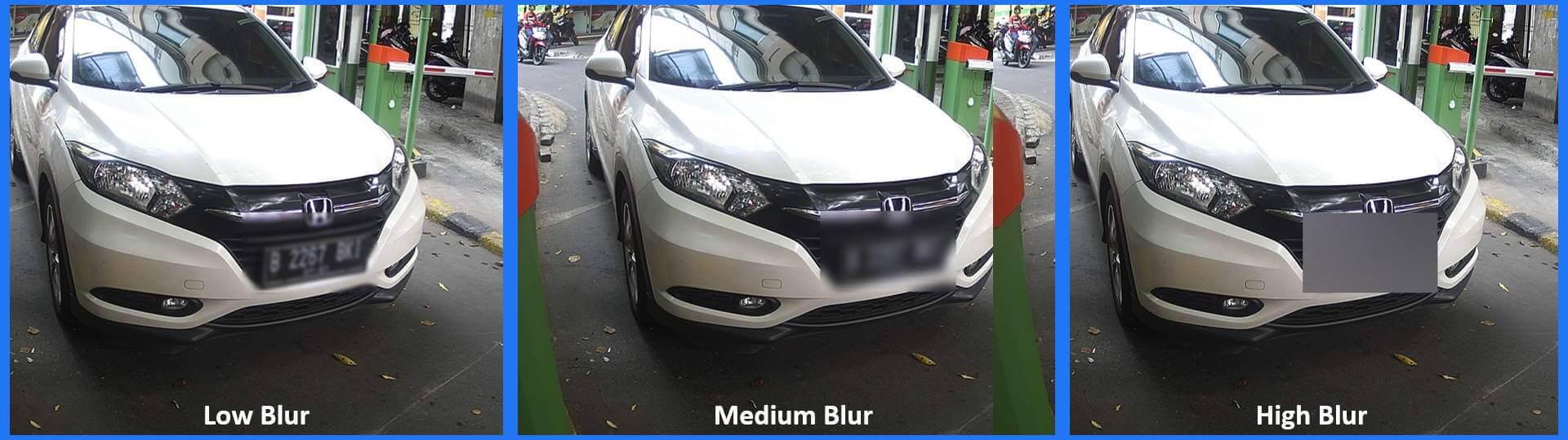 Blur License Plate Level